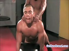 Kamrun And Rocco Martinez Sucking Off And Making Out 7 By Gotrawbreed