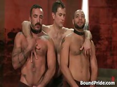 Alessio And Leo In Horny Extreme Gay Bondage S&M Fetish Movie 18 By BoundPride