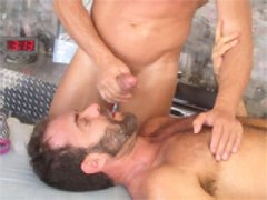 Oily Cock Meat.p6